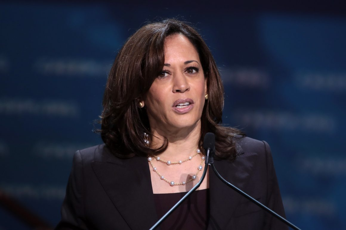 Vice President Kamala Harris speaking at the Democratic National Conference