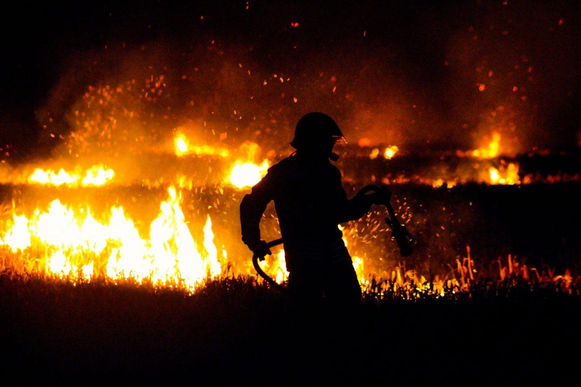 Fire fighter battling a forest fire crisis
